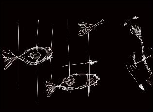 acuatica