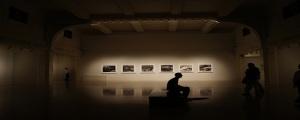 exhibitions-751576_1280