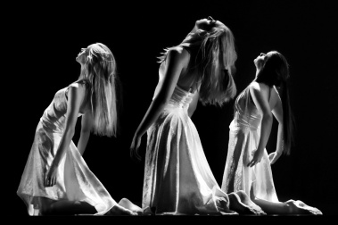 muestra danza contemporánea